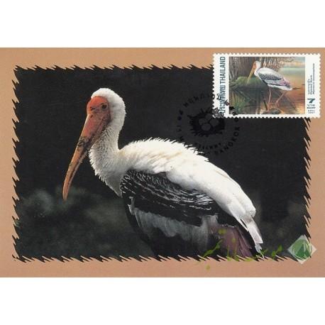 4 عدد کارت پستی تایلند(پرندگان)