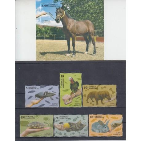 حيوانات اهلى كوبا